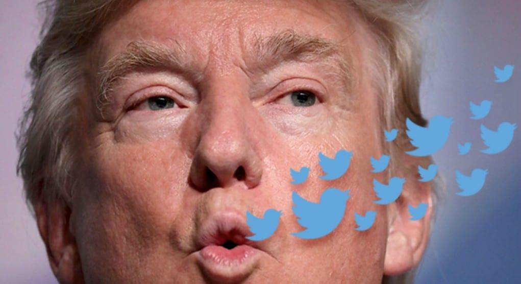 donald_trump_twitter_birds